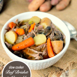 Slow Cooker Beef Brisket and Vegetable Soup