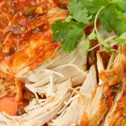 Slow cooker cilantro limechicken