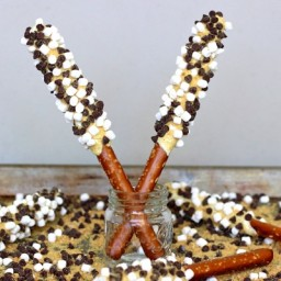 S'mores Pretzel Sticks