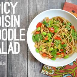 Spicy Hoisin Noodle Salad