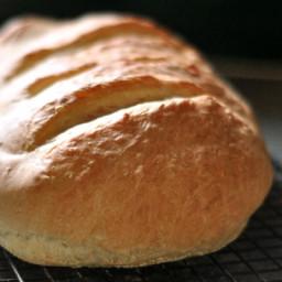 Stand Mixer Italian Bread