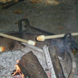 Stick Biscuits