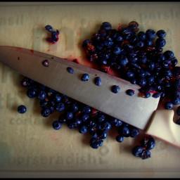 Sweet blueberry-bran muffins