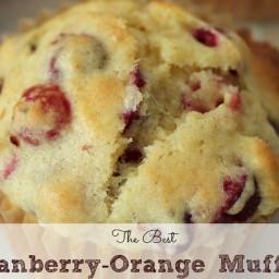 The Best Cranberry Orange Muffins Ever!