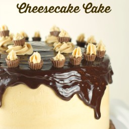 Uncle Johnny's Chocolate Peanut Butter Cheesecake Cake