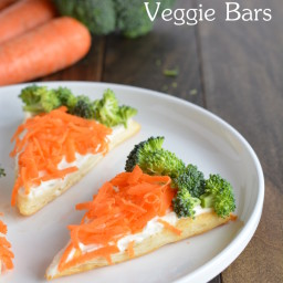 Veggie Bars