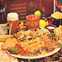 Velveeta Chicken Enchiladas (Mexican)*